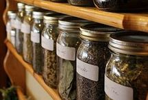 Herbs & Natural Health / Pins related to natural health, herbs, holistic health, essential oils, and natural remedies.