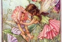 Flower Fairies / by Elisabeth Lefel Yazbec