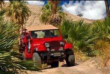 Palm Desert / Places to Visit / by Carol Massei