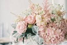 Palest Pink Style / by Emma Bunting