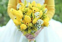 Yellow Wedding Ideas / by Emma Bunting