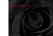 Dark romance / Mood dark romance