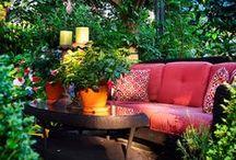 Ogród / #Garden ideas!