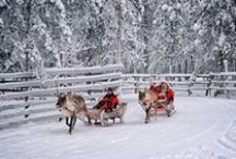 Winter Travel / The best places to travel during the winter and tips on how to get there with the fewest headaches.