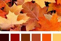 Estações: outono/autunm / Os encantos de outuno