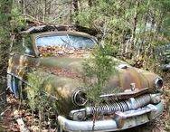 朽ちた車 rusty cars