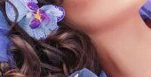 Like a lavender/Levendula