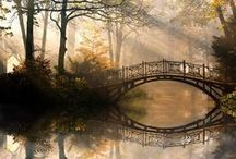 Fotos - Landscapes