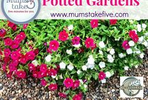 Potted gardens / Helpful tips and great ideas to help you create the perfect potted garden