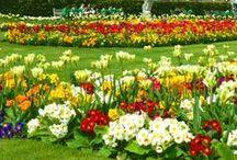 ♥ Botanical GARDENS of the world