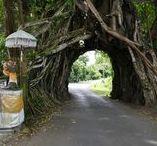 Bali / Reise Report / Trauminsel, Indonesien, Sonne - Strand und eine reiche Kultur, freundliche Menschen