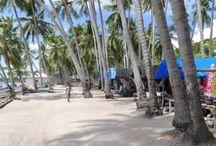 Sulawesi / Reise Report / Sulawesie /  exotische Insel in Indonesien, Tauchen, Schnorcheln, Wildlife, Kulturen