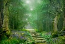 Meditations and Sacred Sounds / Meditations and sacred sounds