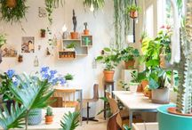 Succulents + Greenery