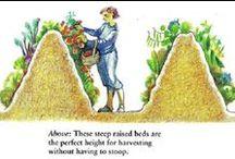Pertanian / Pertanian, Pupuk, Tanaman dan Hidroponik