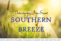 Southern Breeze / This aroma captivates your senses with bursts of freshness. It's like a mild gust of wind in a sunlit field.