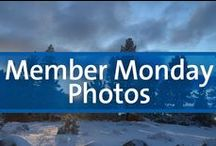 Member Monday Photos / Travel photos submitted for our Global Discovery Vacations Member Monday blog feature.