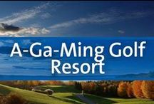 A-Ga-Ming Golf Resort - Kewadin, Michigan / Gorgeous scenery and breathtaking views combine with area activities to create the perfect in northern Michigan retreat. Set alongside Torch Lake and a few miles from Lake Michigan, the outdoor activities that A Ga Ming Golf Resort has to offer are endless. This resort offers guests over 54 holes of golf and the best part of each course is the spectacular views! Nearby guests can also find biking trails, a lake with multiple water activities, and so much more.