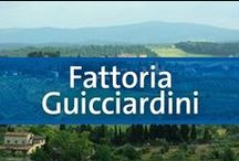 Fattoria Guicciardini - San Gimignano, Siena, Italy / Located in the center of San Gimignano in Tuscany, this stunning Italian getaway has all you will need for your next adventure. Each spacious condo offers you a kitchen, spacious rooms, and more. Each unit also comes with a unique history. You can immerse yourself in the beautiful Italian architecture surrounding this cozy property while also visiting all the local sights as well. Some of the highlights include the Piazza Sant'Agostino and the medieval gate of San Matteo which are both nearby.