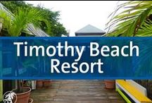 Timothy Beach Resort - St. Kitts / Timothy Beach Resort is the only hotel directly on the Caribbean beach in the beautiful community of Frigate Bay. The 55 rooms and condominium suites provide modern comfort and the best location in all of Frigate Bay. The resort is the ocean lover's choice in Frigate Bay and its oceanfront ambiance is unsurpassed on any island. There is snorkeling at the natural reef and there are adjacent watersports as well as diving. The Royal St. Kitts Golf Course, Pro Shop and Atlantic Beach are all nearby.