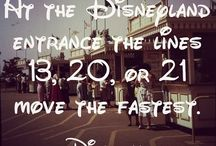 d i s n e y  s e c r e t s / Disney's best secrets.