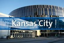 Destination Guide - Kansas City / We may not have resorts in Kansas City, but since it is our home, we wanted to share all the wonderful character it has in case you ever visit!
