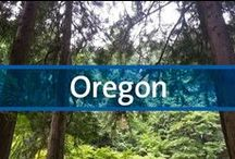 """Destination Guide - Oregon / If you aren't used to the Pacific Northwest, your first reaction upon arrival might be, """"Those trees are enormous!"""" Those mighty Douglas-firs that line the roads are something to behold, an image synonymous with Oregon. Being right off the coast and in a cool climate, the state is ripe with greenery, so you'll want to be outdoors most of the time during your stay."""