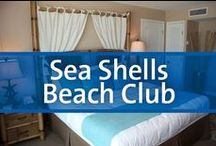 Sea Shells Beach Club - Daytona Beach, Florida / Discover Sea Shells Beach Club, the oceanfront resort on Daytona Beach, Florida, the world's most famous beach. With so much to explore from the Daytona 500, St. Augustine, Kennedy Space Center and even Disney World within driving distance, to the Pier, Ocean Walk and beach activities within walking distance, you won't ever want to leave.