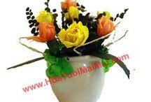 Hoa khô Trang Trí / Hoa tươi sấy khô đẹp và bền