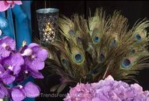 Flower Trend: Enchanted 2013 / A fantasy of color inspired by the rich and exotic elements of magic, fairy tales and whimsical storybooks.