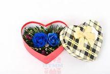 """Hoa Hồng Xanh / Truyền thuyết Hoa Hồng Xanh – một truyền thuyết về tình yêu! Với nội dung kể rằng: """"Nếu người nào trồng một cây hoa hồng bằng cả trái tim dành cho người mình yêu thương thì nó sẽ nở ra một bông hoa hồng màu xanh. Đó là bông hoa có phép màu, nó sẽ cho ta một điều ước…""""."""