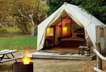 camping / by Laura Lynn