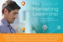 Marketing / Marketing Infographics