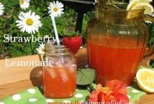 Beverage Recipes / Thirst quenching beverages