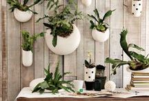 TrendHunting #37 · Wood + ceramics on decor