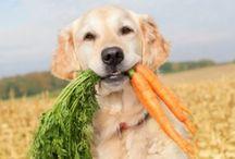 veggies / by Tammy McCartney Largent