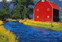 Barns & Farm Houses (graneros y casas de campo)