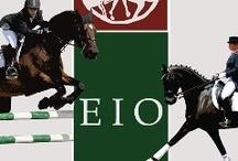 EIO Grand Prix 2012 / Αγώνας ιππασίας, υπερπήδησης εμποδίων και ιππικής δεξιοτεχνίας, που πραγματοποιήθηκε 3-4 Νοεμβρίου 2012, στον Ελληνικό Ιππικό Όμιλο, στον Παράδεισο Αμαρουσίου.