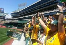 Oakland A's / by NBC Bay Area