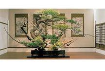 Ikebana ikenobo flower arrangement / lusywahyudi.com