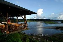 Magical Ecuadorean Amazon / Our Offers in the Ecuadorean Amazon