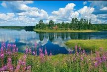 Finlandia / Un país nórdico, culturalmente entre el occidente y el oriente, con una larga historia bajo el poder sueco y después como parte autónoma de Rusia. Ahora con cien años de independencia, moderno y a la vez con muchas partes casi intactas, especialmente en el norte. Aquí verás el aspecto romántico del país.