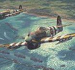 Combat Aircrafts / Aviones de Combate