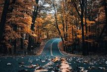 Otoño   Fall   Autumn