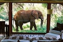 Places to explore - Africa