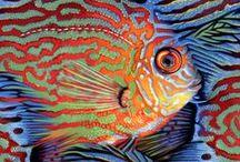 FISH / by Людмила Соболь
