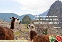Turismo / Programas y paquetes turisticos