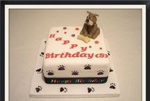 Dogs /Cats / Animals cakes