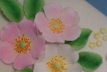 Flowers / Berries / Nuts / Leaves