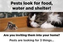 Pests & Pesticides